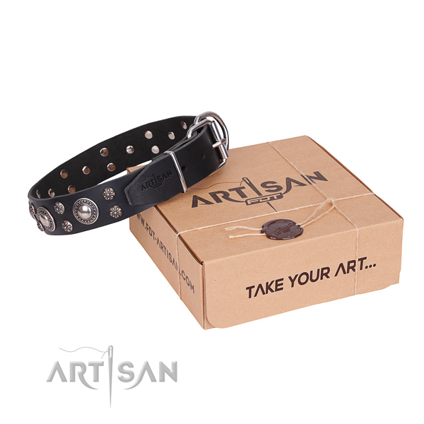Handy use dog collar of durable full grain natural leather with embellishments