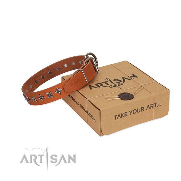 Quality full grain natural leather dog collar with top notch studs