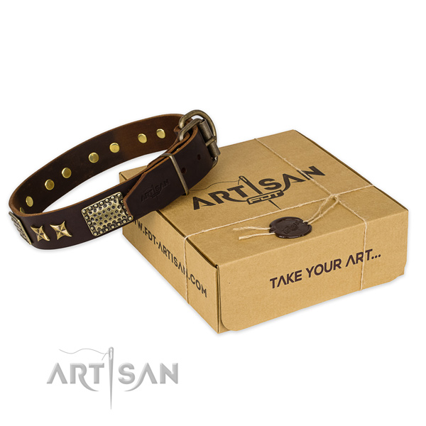 Corrosion proof fittings on full grain genuine leather collar for your stylish four-legged friend