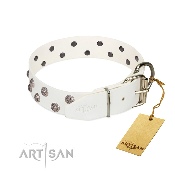 Strong fittings on decorated leather dog collar