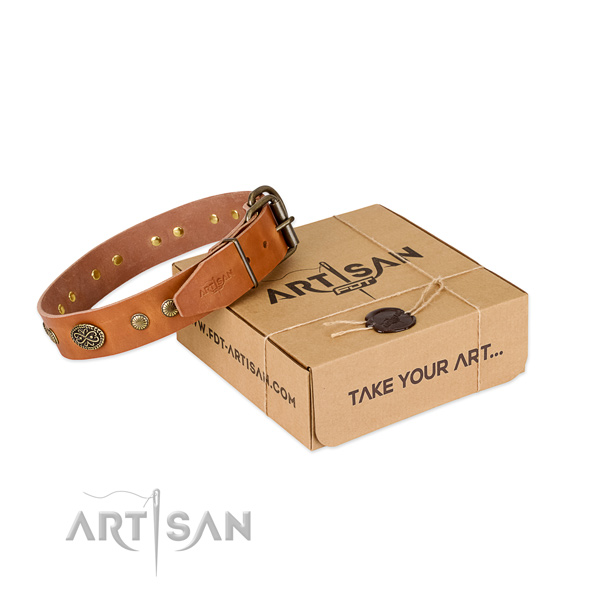 Rust resistant studs on full grain genuine leather dog collar for your dog