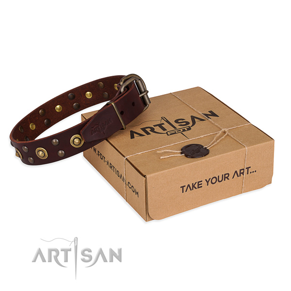 Strong hardware on leather collar for your handsome canine