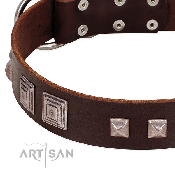 Reliable traditional buckle on genuine leather dog collar for easy wearing