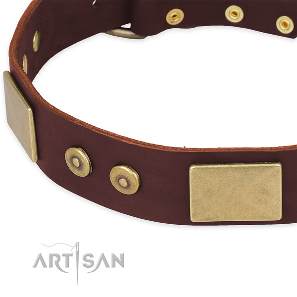 Full grain natural leather dog collar with adornments for handy use