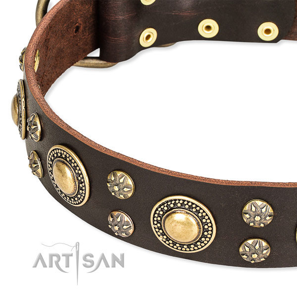 Handy use embellished dog collar of finest quality natural leather