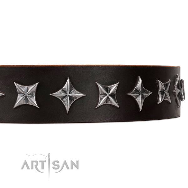 Walking adorned dog collar of best quality full grain leather
