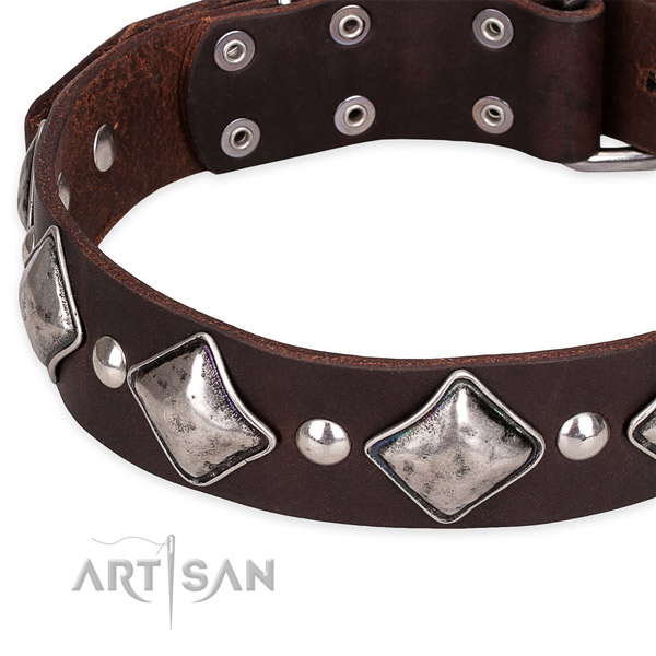 Comfy wearing decorated dog collar of quality natural leather