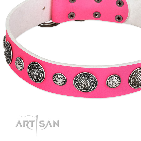 Full grain genuine leather collar with strong fittings for your handsome four-legged friend