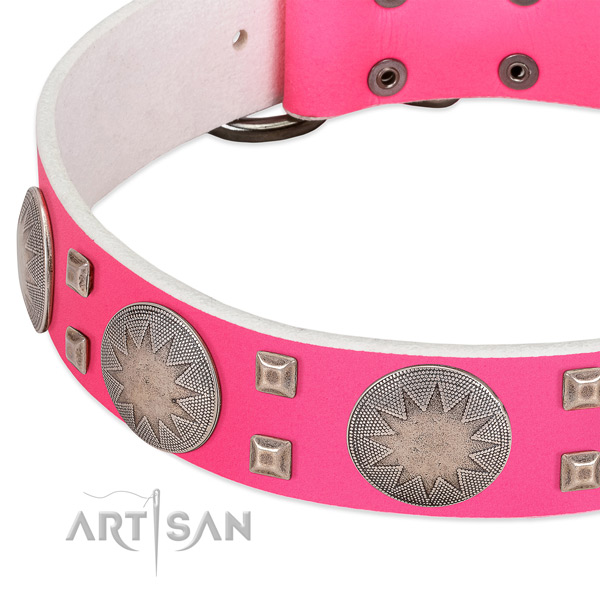 Walking soft to touch full grain leather dog collar