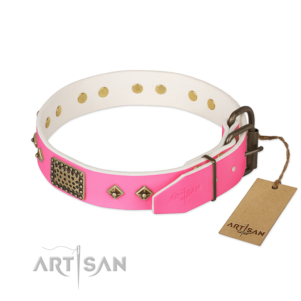 Reliable studs on basic training dog collar