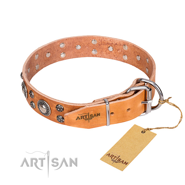 Everyday walking adorned dog collar of best quality genuine leather