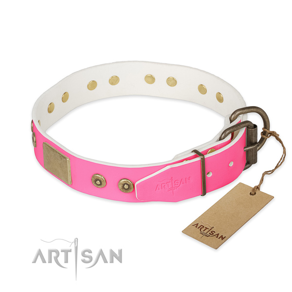 Reliable traditional buckle on daily use dog collar