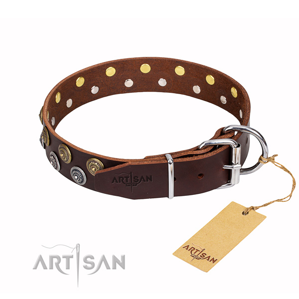 Daily use studded dog collar of fine quality natural leather