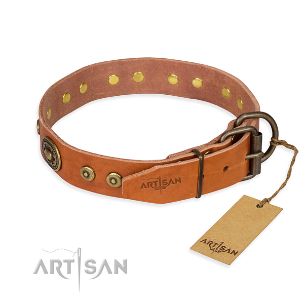 Full grain natural leather dog collar made of best quality material with corrosion resistant adornments