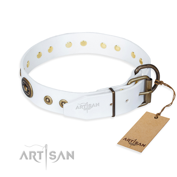 Full grain natural leather dog collar made of gentle to touch material with reliable studs
