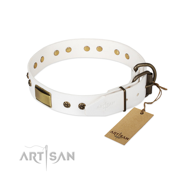 Full grain leather dog collar with durable fittings and adornments