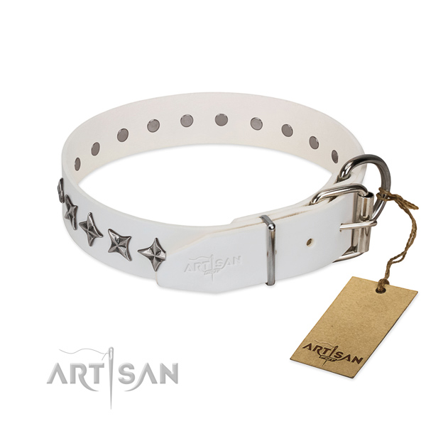 High quality full grain natural leather dog collar with top notch adornments