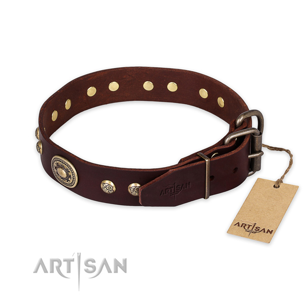 Reliable buckle on natural leather collar for walking your canine