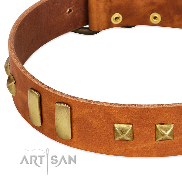 Reliable genuine leather dog collar with decorations for stylish walking