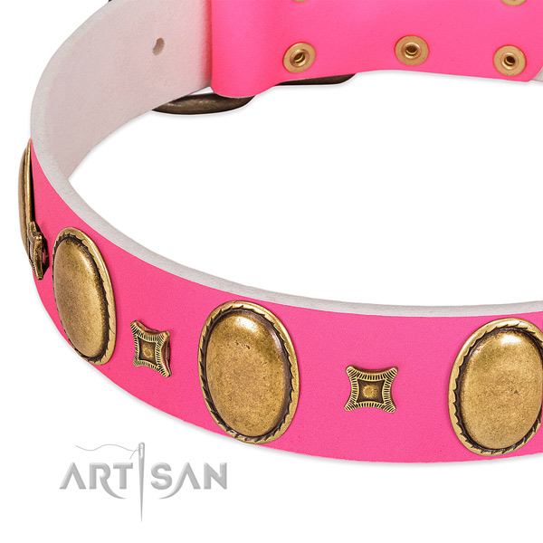 High quality genuine leather dog collar with adornments for everyday use