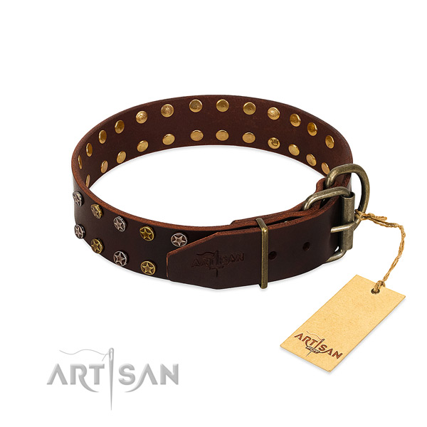 Daily use full grain genuine leather dog collar with awesome embellishments