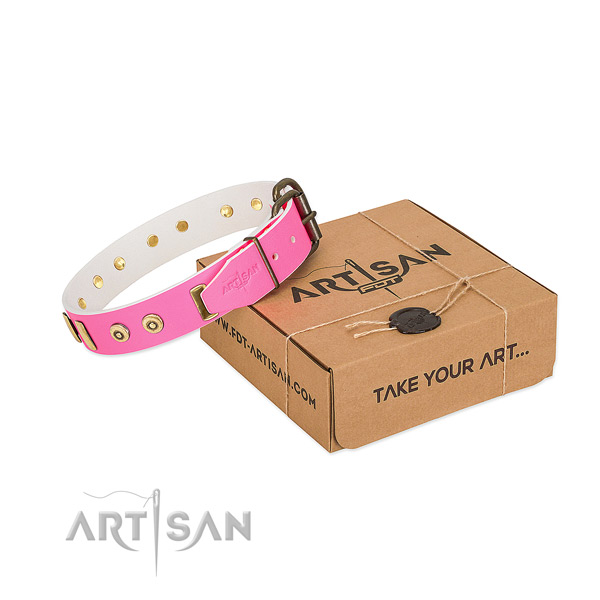 Leather dog collar with inimitable embellishments for stylish walking