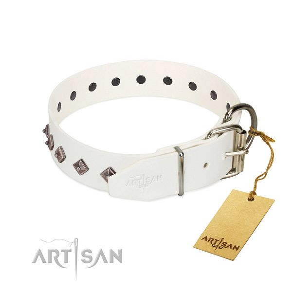 Awesome embellishments on full grain leather collar for comfy wearing your doggie