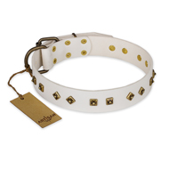 """Snow Cloud"" FDT Artisan White Leather Amstaff Collar with Square and Rhomb Studs"