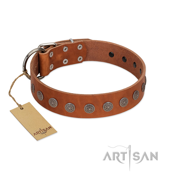 Unusual decorations on natural leather collar for comfortable wearing your doggie