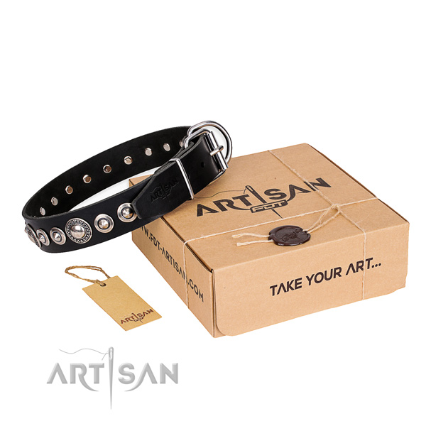 Fine quality leather dog collar