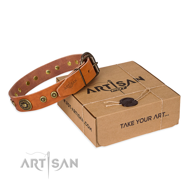 Full grain leather dog collar made of quality material with strong traditional buckle