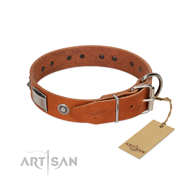 Amazing full grain natural leather collar with embellishments for your four-legged friend