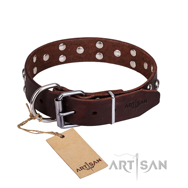 Daily walking dog collar of durable natural leather with adornments
