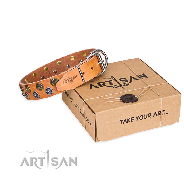 Everyday use dog collar of finest quality full grain natural leather with decorations