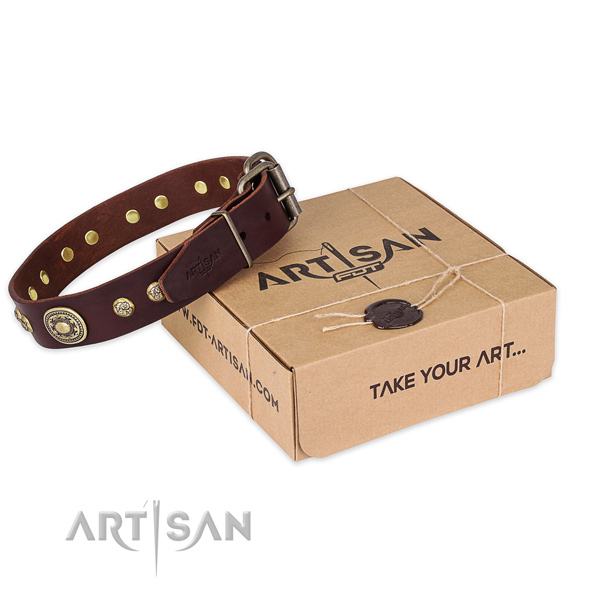 Rust-proof fittings on leather dog collar for daily use