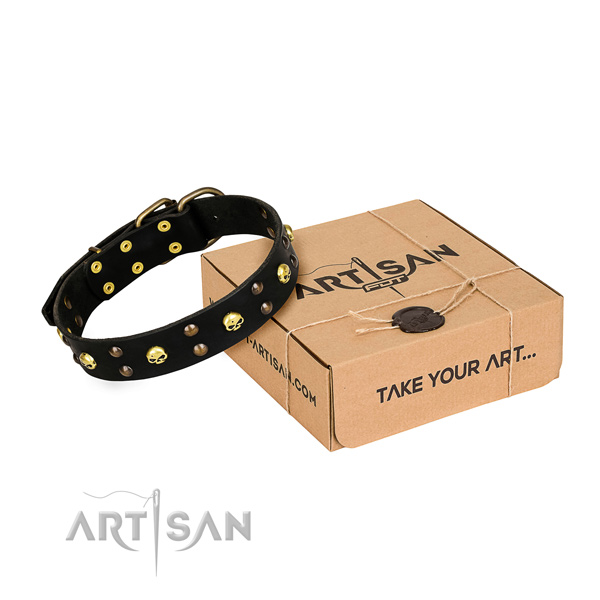 Basic training dog collar of strong leather with decorations