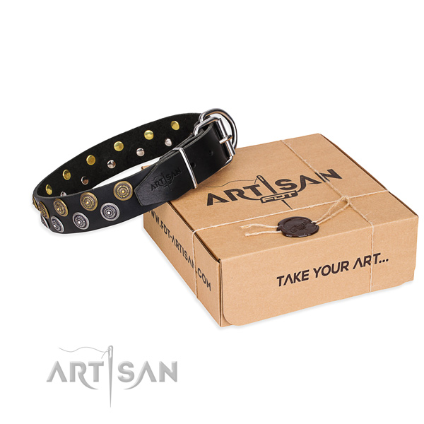 Daily use dog collar of best quality full grain leather with adornments
