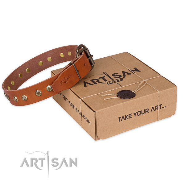 Strong fittings on full grain genuine leather collar for your impressive canine