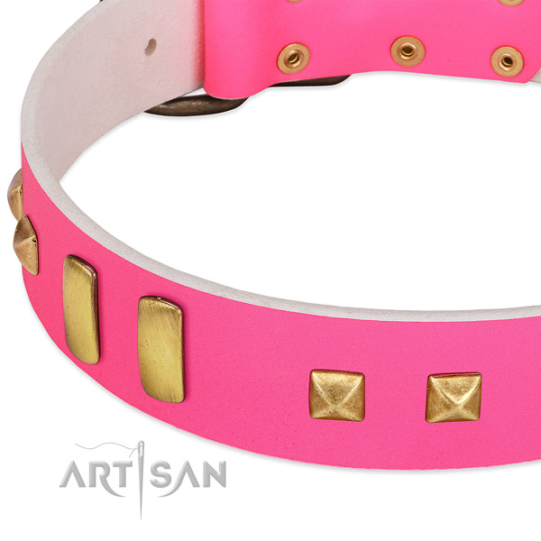 Perfect fit leather collar for your beautiful doggie