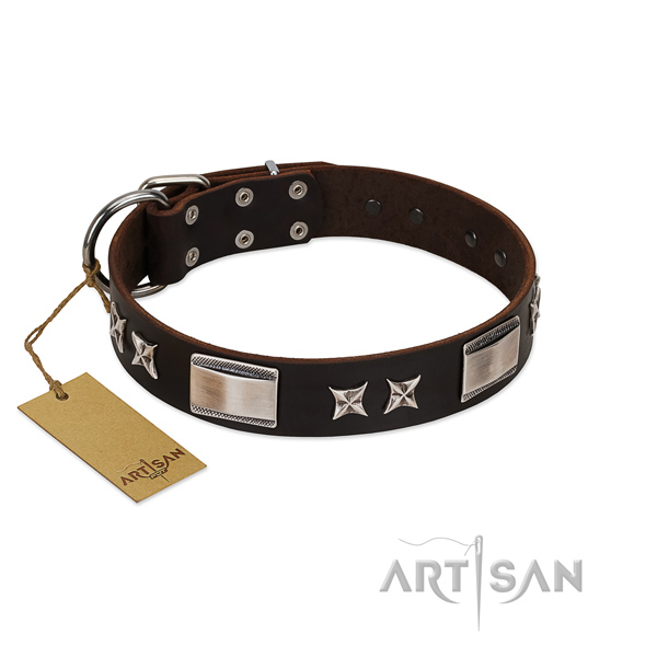 Adorned dog collar of natural leather