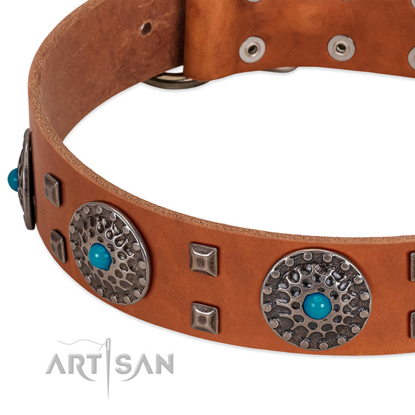 Top notch full grain natural leather dog collar with stylish embellishments