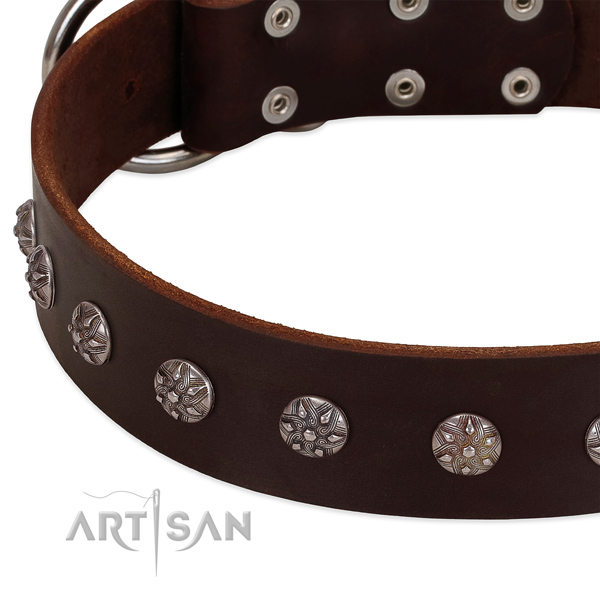 Gentle to touch genuine leather dog collar with adornments for your four-legged friend