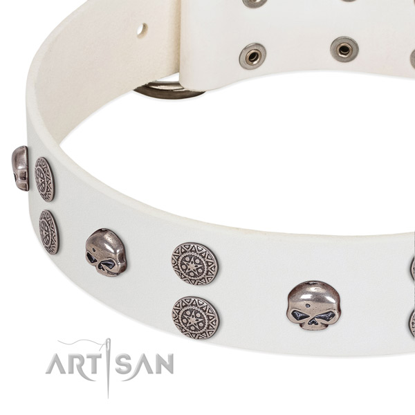 Soft full grain natural leather dog collar with trendy studs