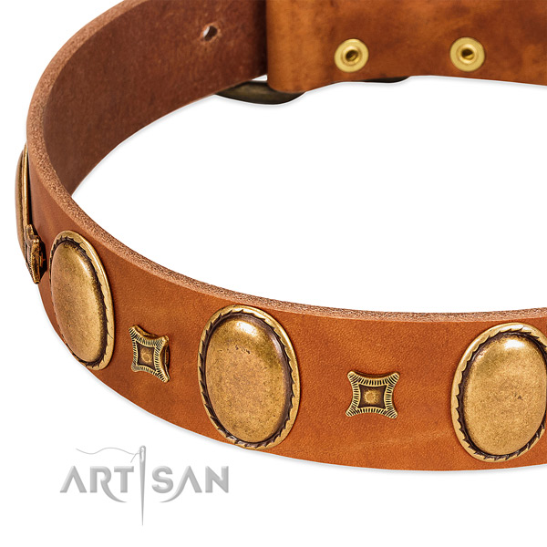 Full grain genuine leather dog collar with corrosion proof traditional buckle for stylish walking