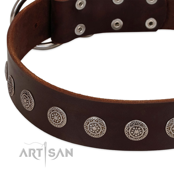 Flexible full grain genuine leather collar with studs for your dog
