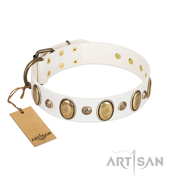 Full grain leather dog collar of high quality material with exceptional adornments
