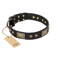 """Jewel Passion"" FDT Artisan Fashionable Black Leather Amstaff Collar"