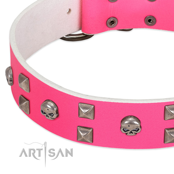 Genuine leather collar with significant studs for your four-legged friend
