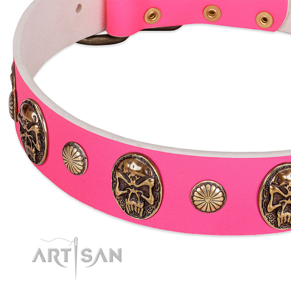 Rust-proof embellishments on leather dog collar for your dog