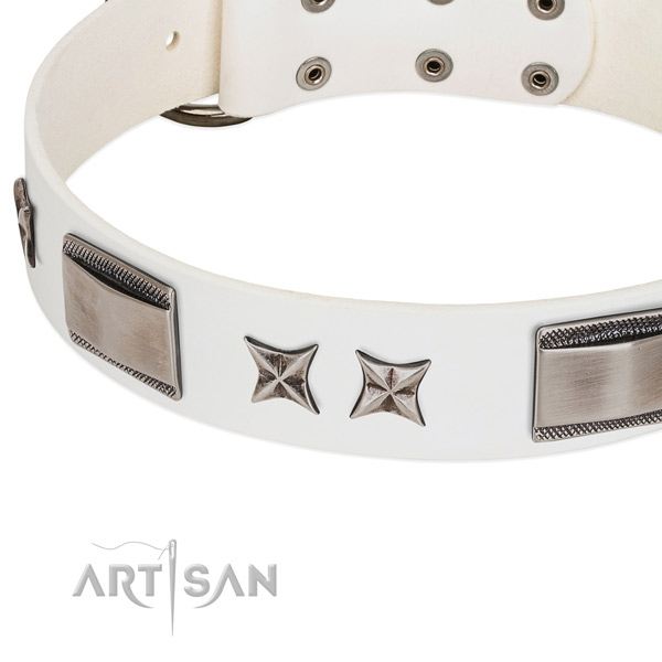 Reliable full grain natural leather dog collar with durable hardware